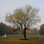 Есен '13