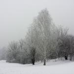 Зима '13
